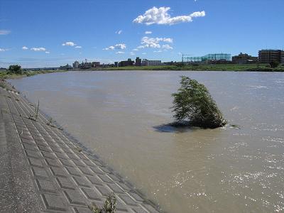 やっぱり水は増えていた_c0091679_1433225.jpg