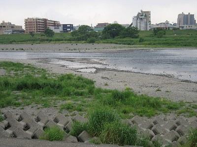 こんな多摩川_c0091679_23584195.jpg