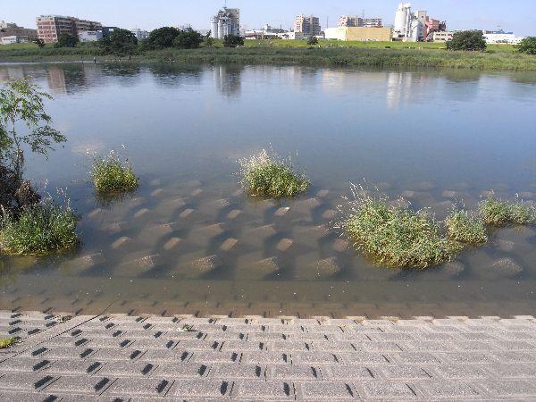 水の量が少し多め・・・_c0091679_8273166.jpg