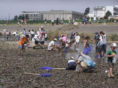 多摩川で潮干狩り?_c0091679_18523838.jpg