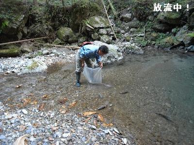 多摩川親子探検記--Tamagawalk--オープン!_c0091679_0314497.jpg