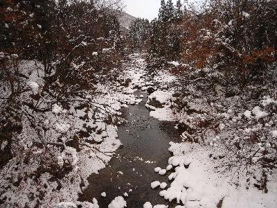 雪の下のお魚_c0091679_2103168.jpg