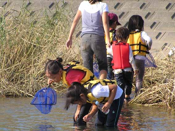 夏休み中、きぬたまあそび村の川遊びに来てくださいね。_c0091679_175380.jpg
