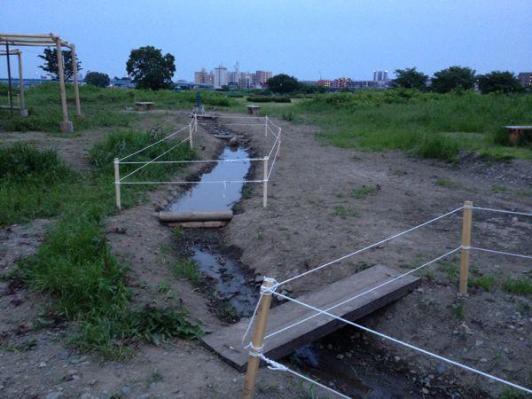 水辺の草がはえてくるまで_c0091679_0262717.jpg