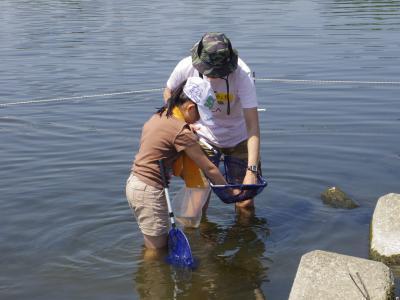 今年はじめての水辺ガサガサ_c0091679_12285731.jpg