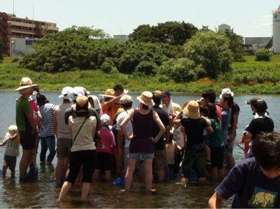 7月7日多摩川でガサガサ_c0091679_1150584.jpg