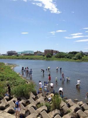 7月7日多摩川でガサガサ_c0091679_15404187.jpg