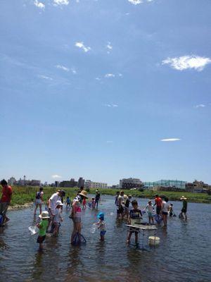 7月7日多摩川でガサガサ_c0091679_15404282.jpg