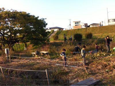 原っぱの会で草刈りと植樹_c0091679_2141646.jpg