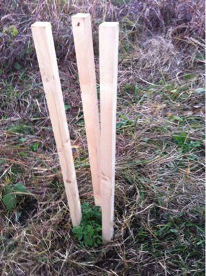 原っぱの会で草刈りと植樹_c0091679_2142135.jpg