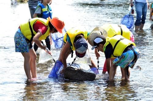 6月3日(日)あそびの日水辺ガサガサ&2日・3日TamagawaBrew水辺ガサガサ_c0091679_22590109.jpg