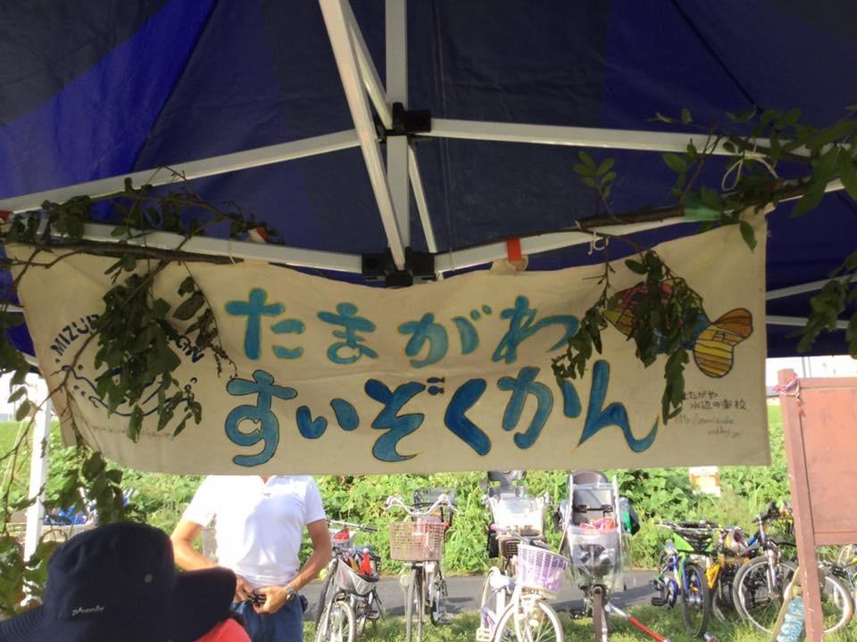 9月30日の『多摩川であそぼう』 中止決定しました。_c0091679_18241543.jpg