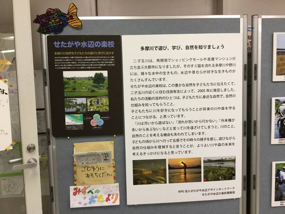 10/20たまがわミニ水族館・10/21原っぱアトリエ_c0091679_08085572.jpg