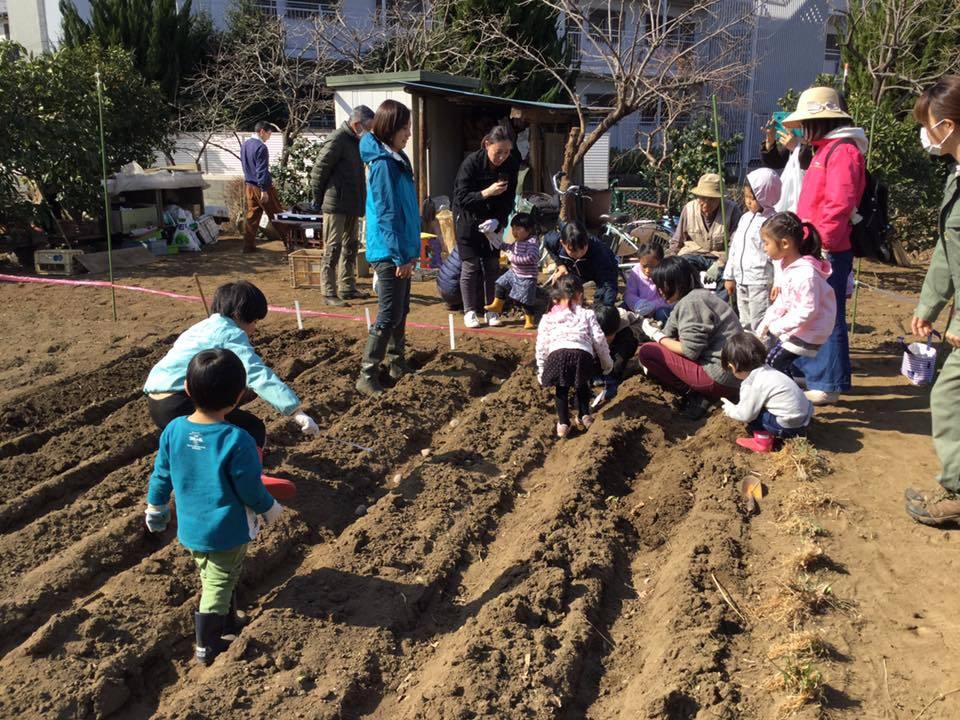 みんなの畑・かわべ農園の活動について_c0091679_15513457.jpg